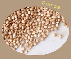 Quinoia